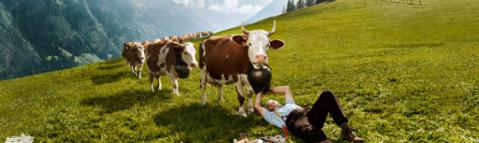 farmer fixing cowbell