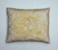 pillow by damien rudd