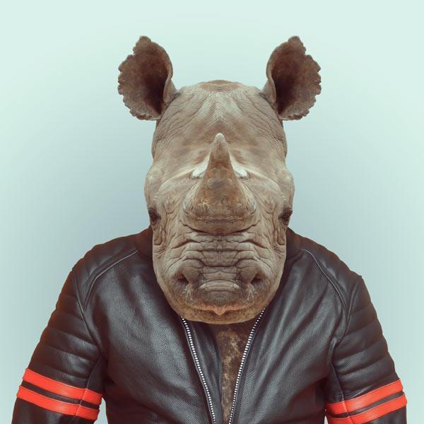 Animals Dressed as People