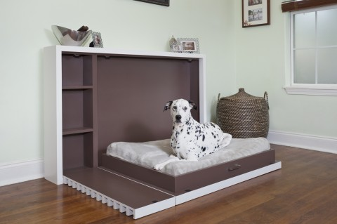 Modern Fold Out Pet Bed