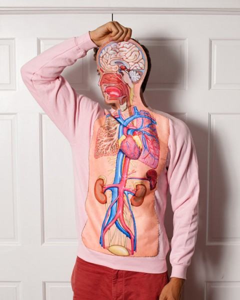 Sweatshirt - Body Anatomy Science Teacher