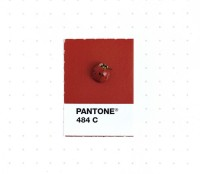 Tiny object and their pantone color