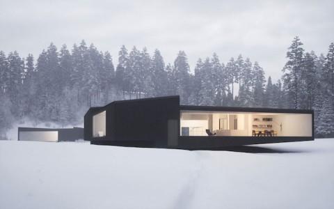 Geometric Twin houses