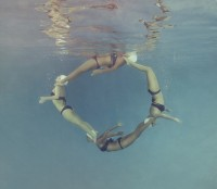 MalloryMorrison_photography-Dolphin-Circle-1050x1050