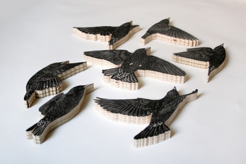 european_starling_product_01a