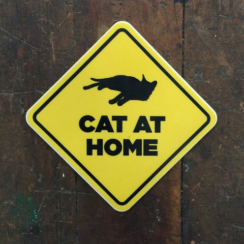 Cat At Home Sticker