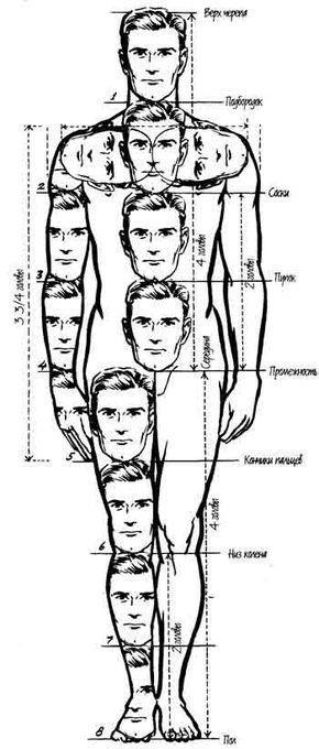 Swissmiss Anatomy Drawing Hack