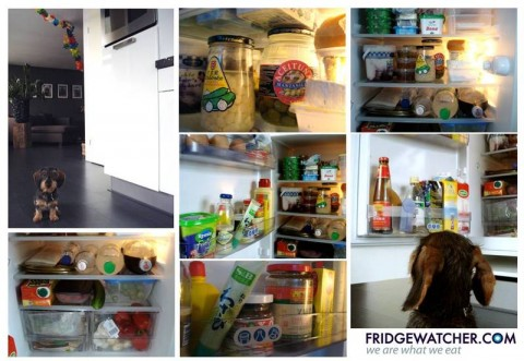 Fridgewatcher_00036