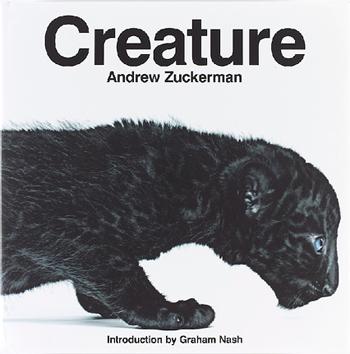 Andrew_zuckerman