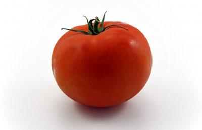 341_tomato_400