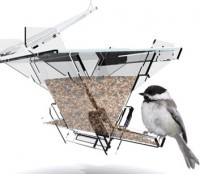 the architect's birdfeeder
