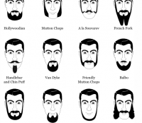 Expanded Beard Type Chart
