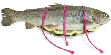 Wii_fish